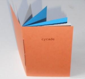 cycade 03