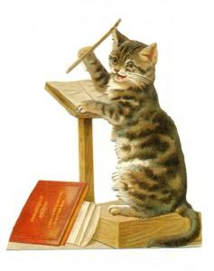 poesieplaatje kat en muziek